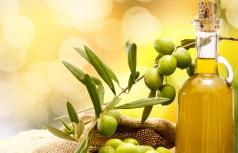 Oils/Fats