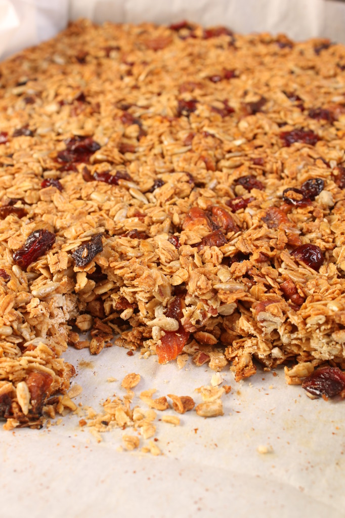 Granola BAR on tray #2